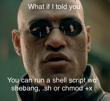 run-script